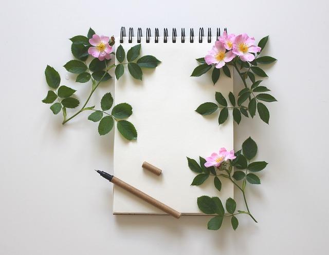 大切な作品を書くお気に入りのノート