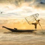 船に乗り魚を捕る漁師の画像